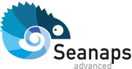 logo SEANAPS-ADVANCED